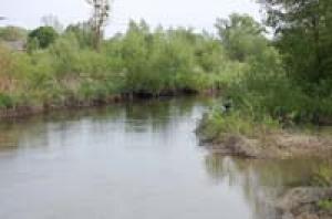 rzeka-wieprz